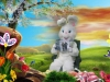 Easter Photos: Easter Bunny Reading
