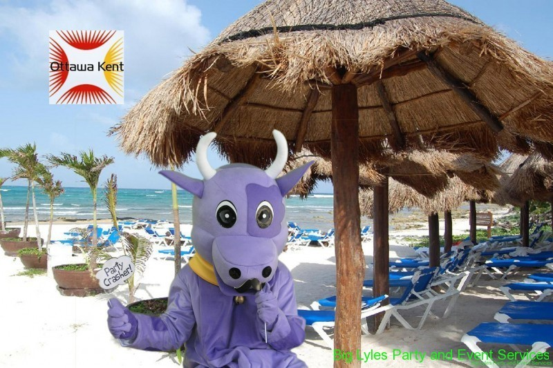 purple cow mascot, at the beach, Green screen photography