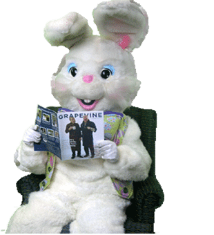 Easter bunny reading a magazine